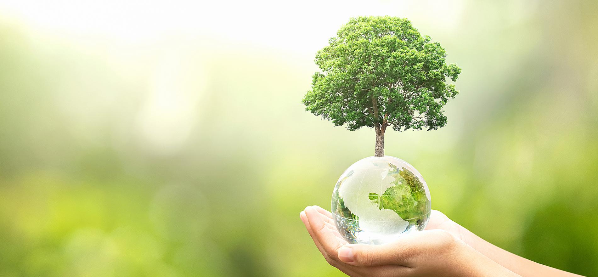 株式会社オー・エヌ・シーは 『健全』『活力』『思いやり』を理念とし 安定と成長、社会への貢献を目指しています。