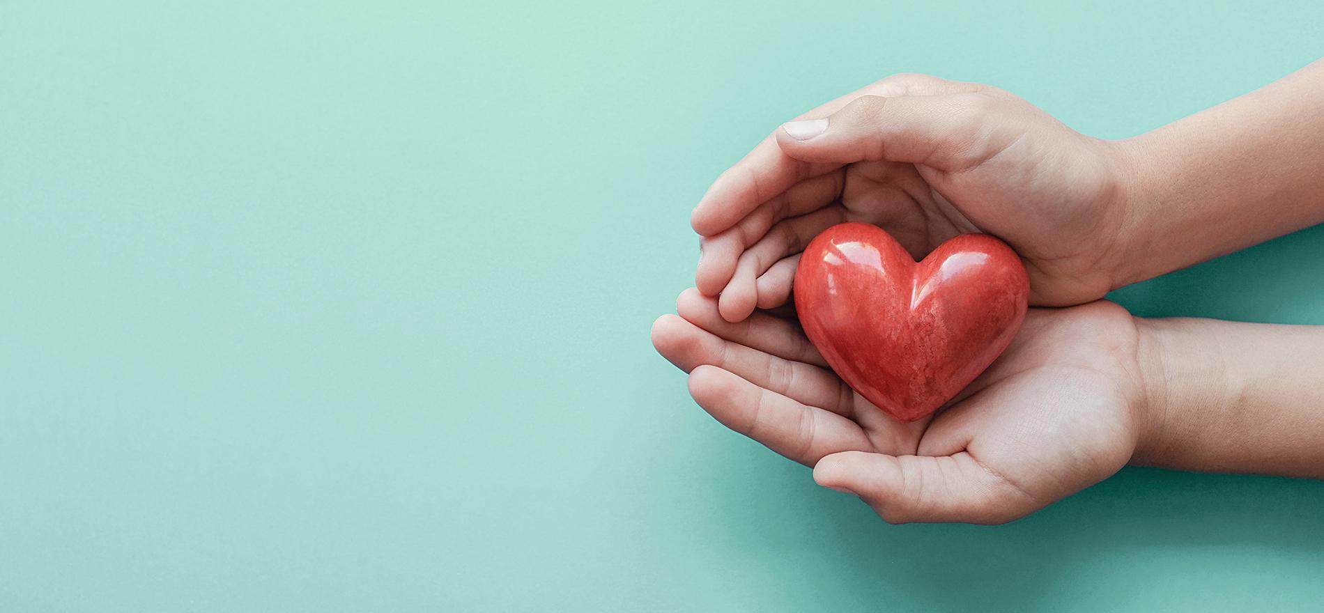 『思いやり』とは 他人に対する「礼」を具体的に表現することであり、 常に高い道徳観を持ち続ける事であります。